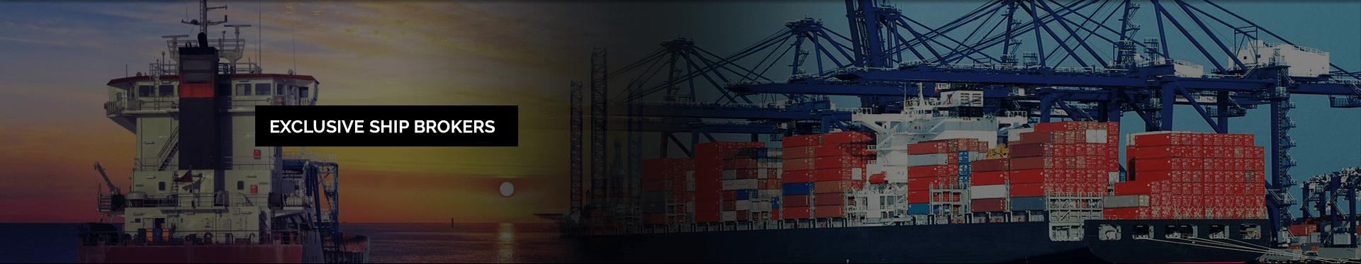 Ship Chartering Company LPG Ship Roro Vessel Fsru Selaata Fsru Lebanon
